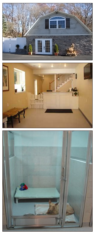 Home Away From Home Pet Boarding Facility